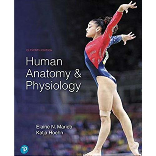 Human Anatomy and Physiology (11th Edition) Elaine N. Marieb and Katja Hoehn | 9780134807423