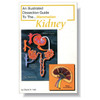 Mammal Kidney Dissection Guide
