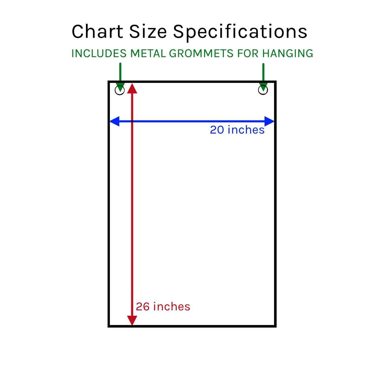 BMI and Waist Circumference Laminated Chart