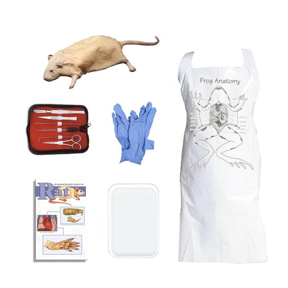 Rat Dissection Kit