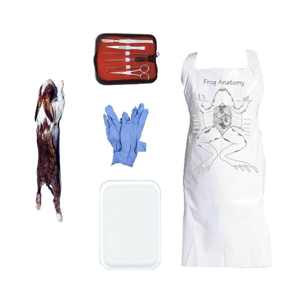 Rabbit Dissection Kit