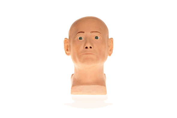 SimSkin Head Training Model - Cosmo Head - Front View of the Head and Neck, Green Eyes