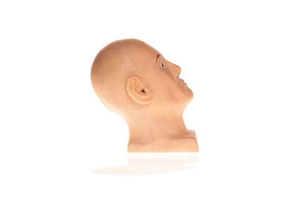 SimSkin Head Training Model - Cosmo Head - Right Side View of Face, Neck, Ear 1