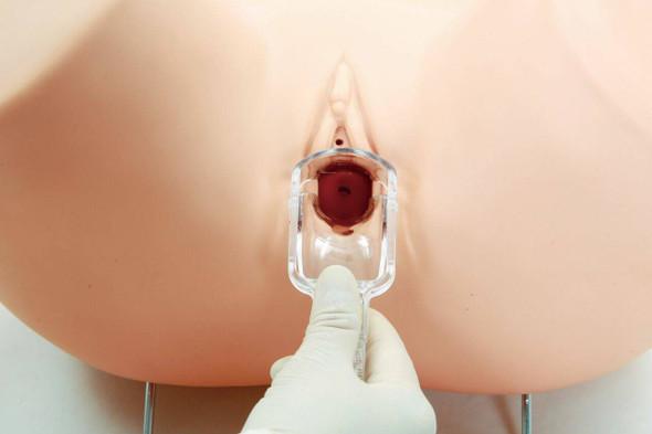 Anatomy Lab Advanced Gynecologic Simulator 1