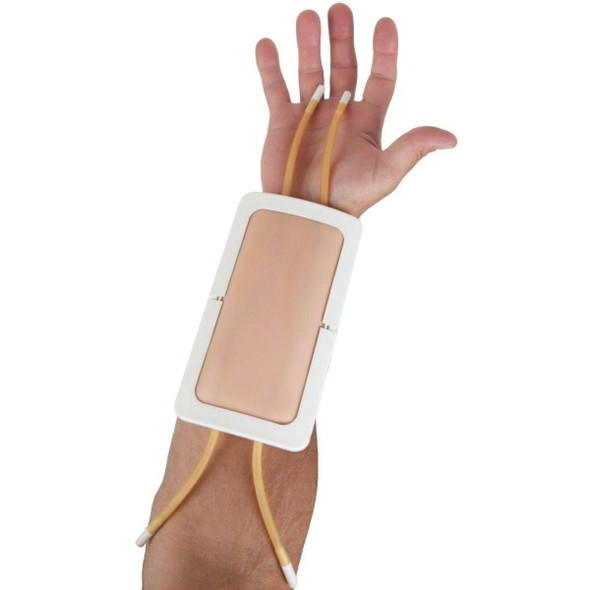 Anatomy Lab Venipuncture Pad 1