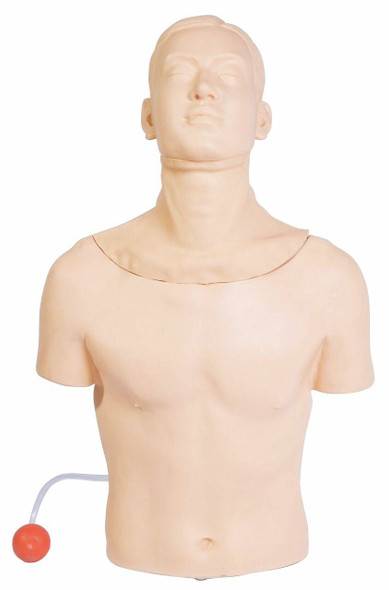Anatomy Lab Tracheostomy Model
