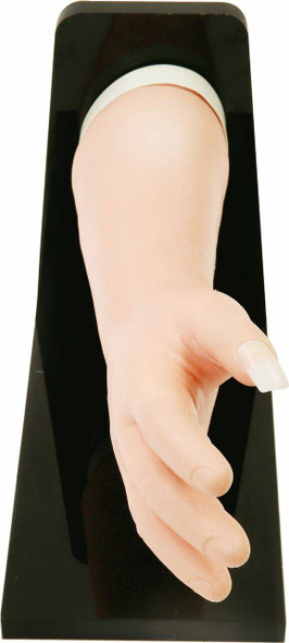 Anatomy Lab Fingernail Removal Trainer