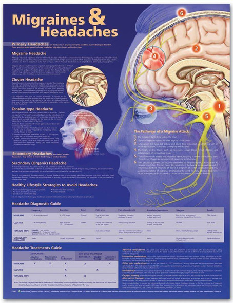 Migraine and Headaches Laminated Anatomical Chart