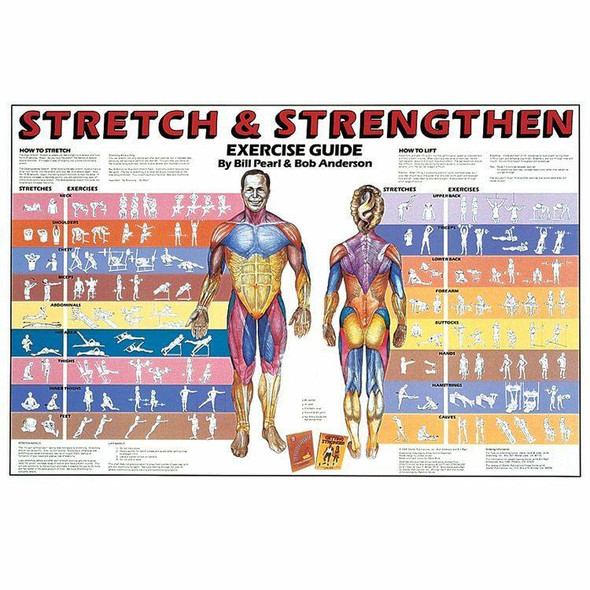 Stretch and Strengthen Laminated Chart