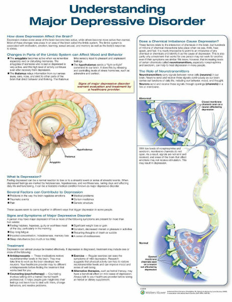 Understanding Major Depressive Disorder Laminated Anatomical Chart - 3rd Edition