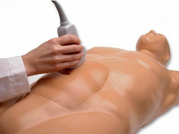 Abdominal Aortic Aneurysm Ultrasound Training Model 1