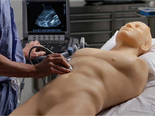 FAST Exam Real Time Ultrasound Training Model 1
