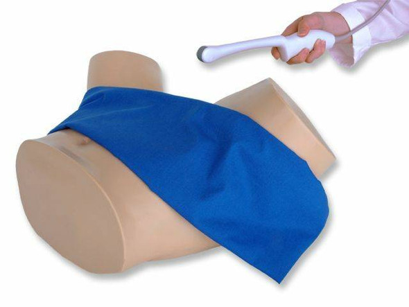 Combination IUP Ectopic Pregnancy Transvaginal Ultrasound Training Model