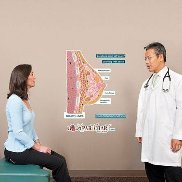 Breast Lumps Self-Exam Dry-Erase Sticky Wall Chart - 27 in x 40 in