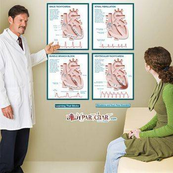 Circulatory and Heart Rate Disorders Anatomy Dry-Erase Sticky Wall Chart - 48 in x 60 in