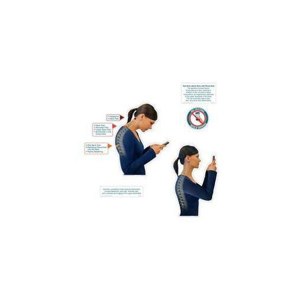 Text Postural Dysfunction Condition Dry-Erase Sticky Wall Chart - 54 in x 40 in