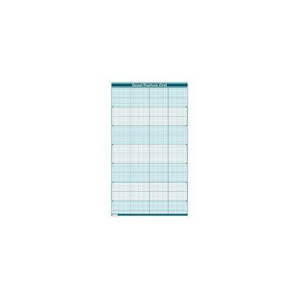Good Posture Grid Dry-Erase Sticky Wall Chart - 54 in x 80 in
