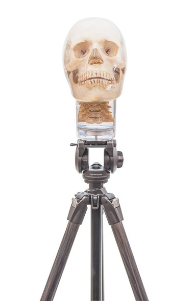 Tripod For X-Ray Phantom Head 1
