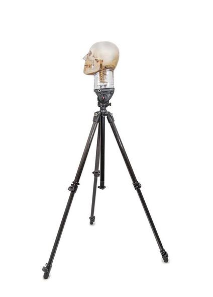 Tripod For X-Ray Phantom Head