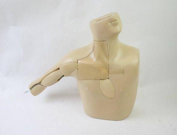Anatomy Lab PICC Ultrasound Training Model