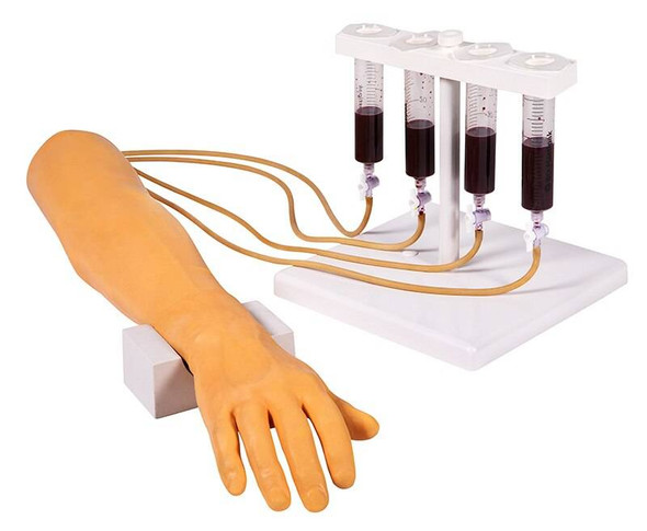 Intravenous Injection and Infusion Training Arm