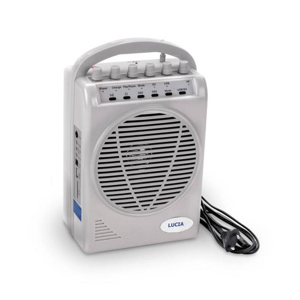 Amplifier/Speaker System 110V