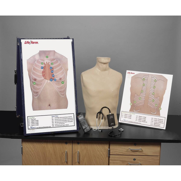 Deluxe Life/form Auscultation Training Station