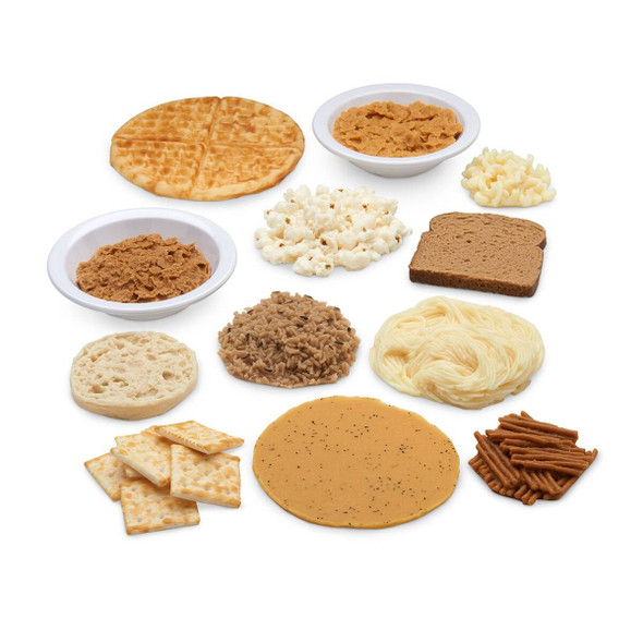 Nasco Big Grains Food Replica Kit