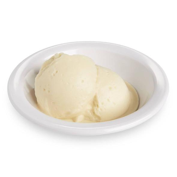 Nasco Ice Cream Food Replica - Vanilla - 1 cup 240 ml