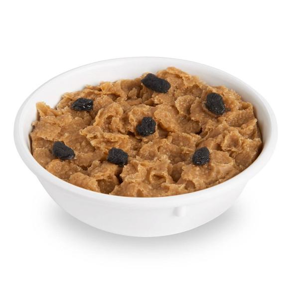 Nasco Raisin Bran Food Replica - 1 cup