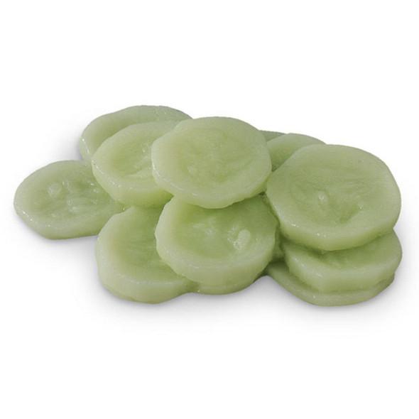 Nasco Cucumber Food Replica - 1/2 cup