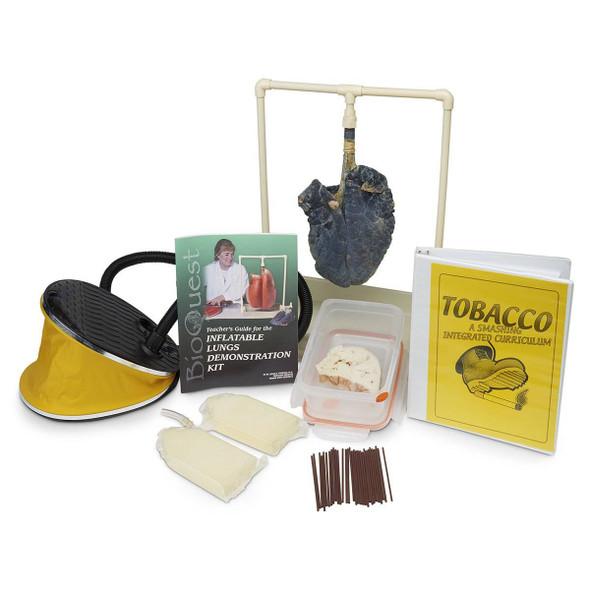 Tobacco - A Smashing Curriculum 1