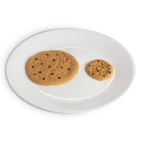 Nasco Cookie Food Replica - Chocolate Chip - 2 in dia 5 cm 1