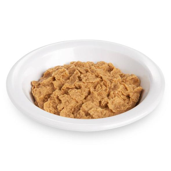 Nasco Bran Flakes Food Replica - 1.5 cup
