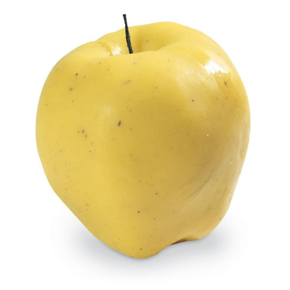 Nasco Apple Food Replica - Golden Delicious - 6 oz