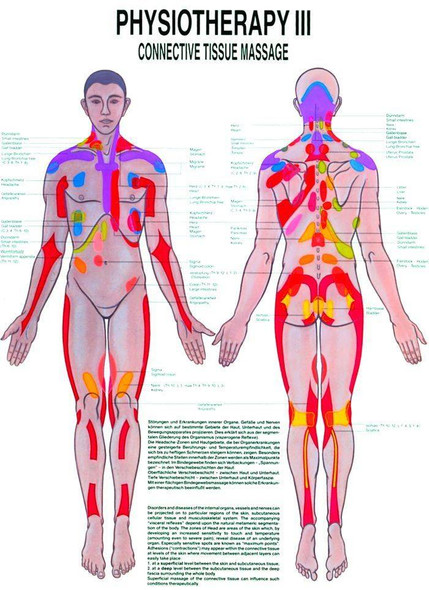 Connective Tissue Massage Laminated Chart