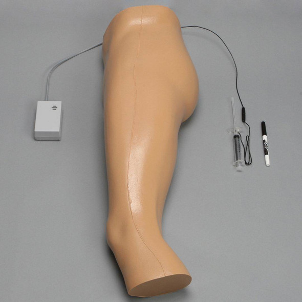Soft Tissue Hip Injection Model with Skin