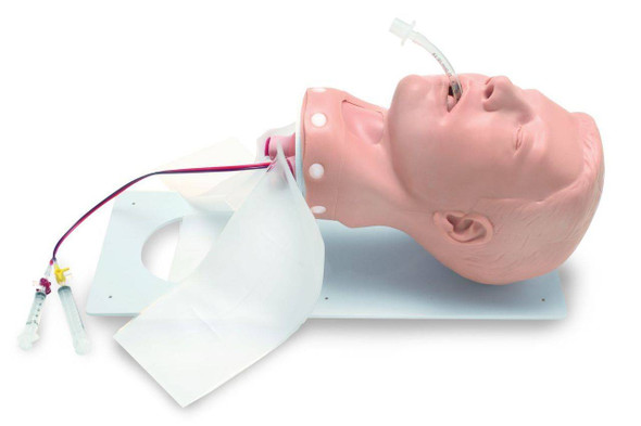 Deluxe Adult Airway Management Head Model