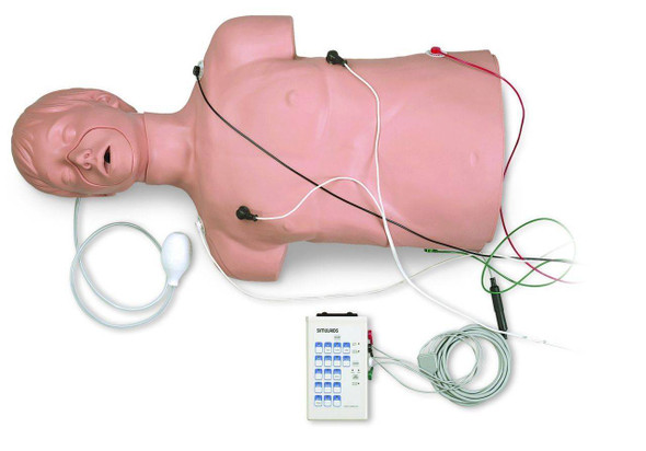 Defibrillation and CPR Training Manikin
