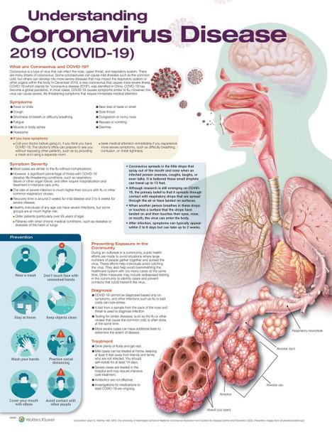 Understanding Coronavirus Disease COVID-19 Laminated Anatomical Chart