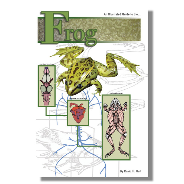 Anatomy Lab Frog Dissection Guide