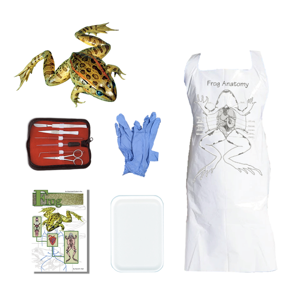 Frog Dissection Kit
