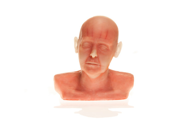 SimSkin Cosmetic Filler Training Model - Diaphanous Zsa Zsa - Front View of the Head and Shoulder