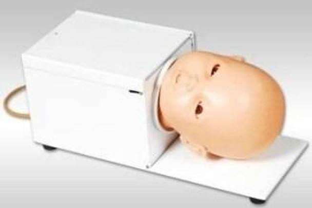 Anatomy Lab Venipuncture Training Baby Head