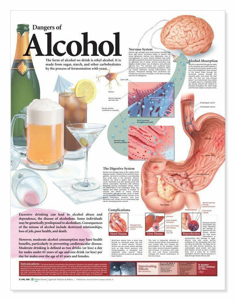 Dangers Of Alcohol Laminated Anatomical Chart - 2nd Edition