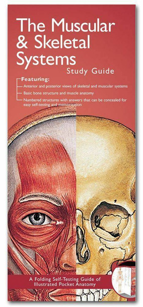 Illustrated Pocket Anatomy - Muscular and Skeletal Systems Study Guide - 2nd Edition