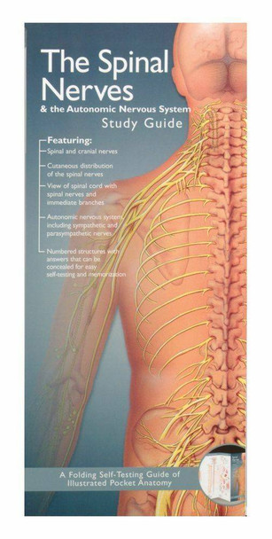 Illustrated Pocket Anatomy - Spinal Nerves and The Autonomic Nervous System Study Guide - 2nd Edition