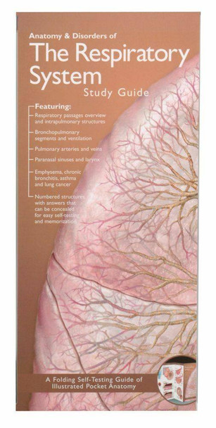 Illustrated Pocket Anatomy - Respiratory System and Disorders Study Guide - 2nd Edition