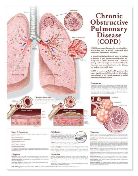 Chronic Obstructive Pulmonary Disease COPD Laminated Anatomical Chart - 2nd Edition