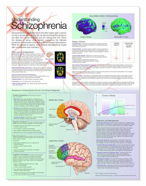 Understanding Schizophrenia Laminated Anatomical Chart
